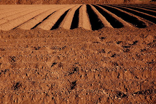 only 60 years of farming left if soil degradation continues