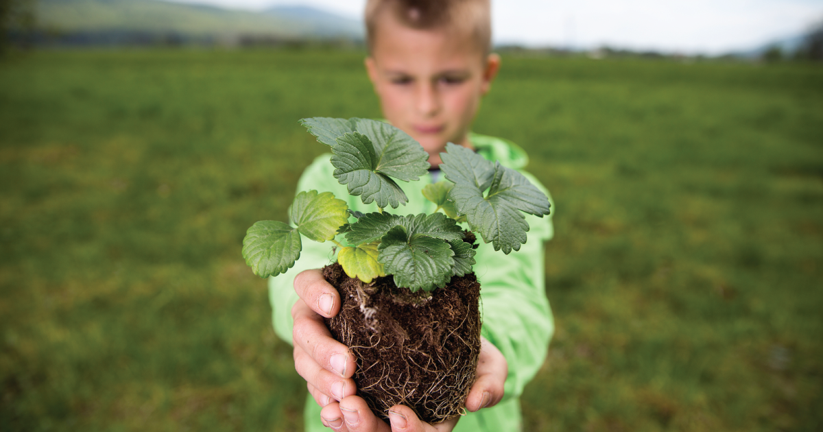 Learn Why Biodynamic Soils Are the Healthiest