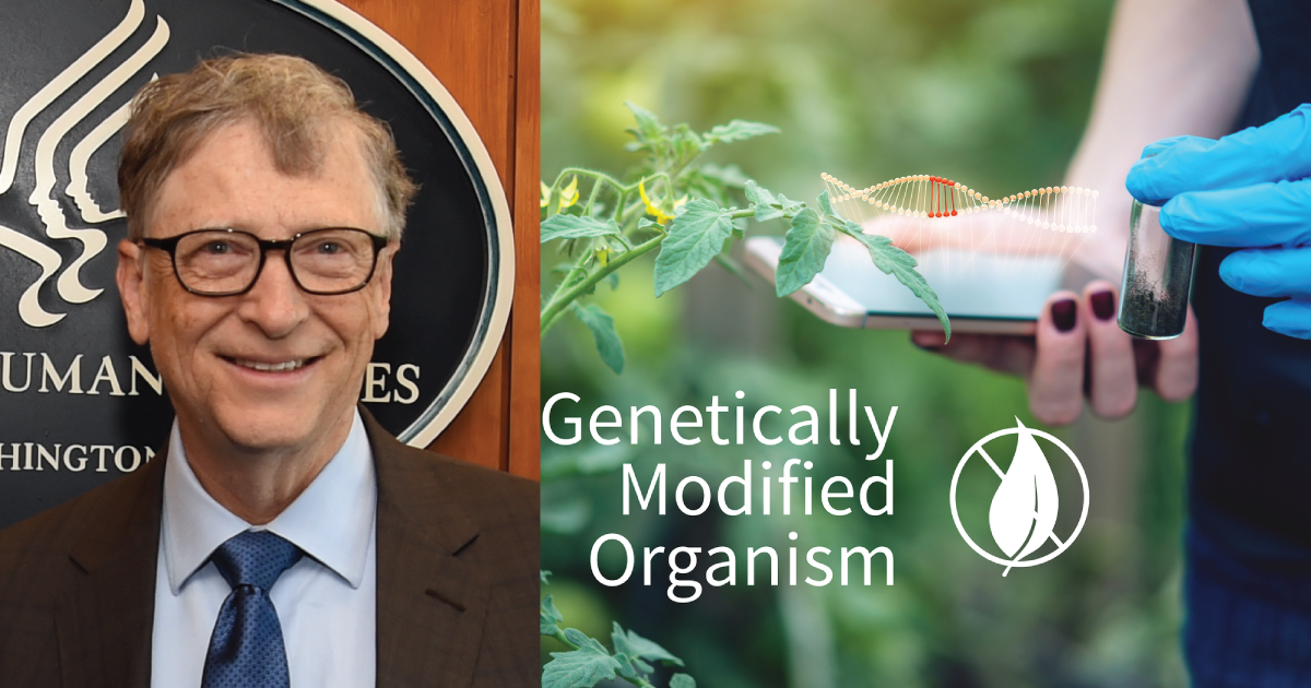 Bill Gates Donates $15 Million to Campaign Pushing GMOs on Small Farmers Around the World