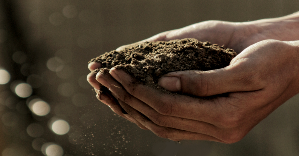 Soil Power The Dirty Way To A Green Planet