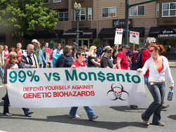 "BIG WIN Against Monsanto - California 'Roundup' Will Be Labeled ""Cancer Causing"""