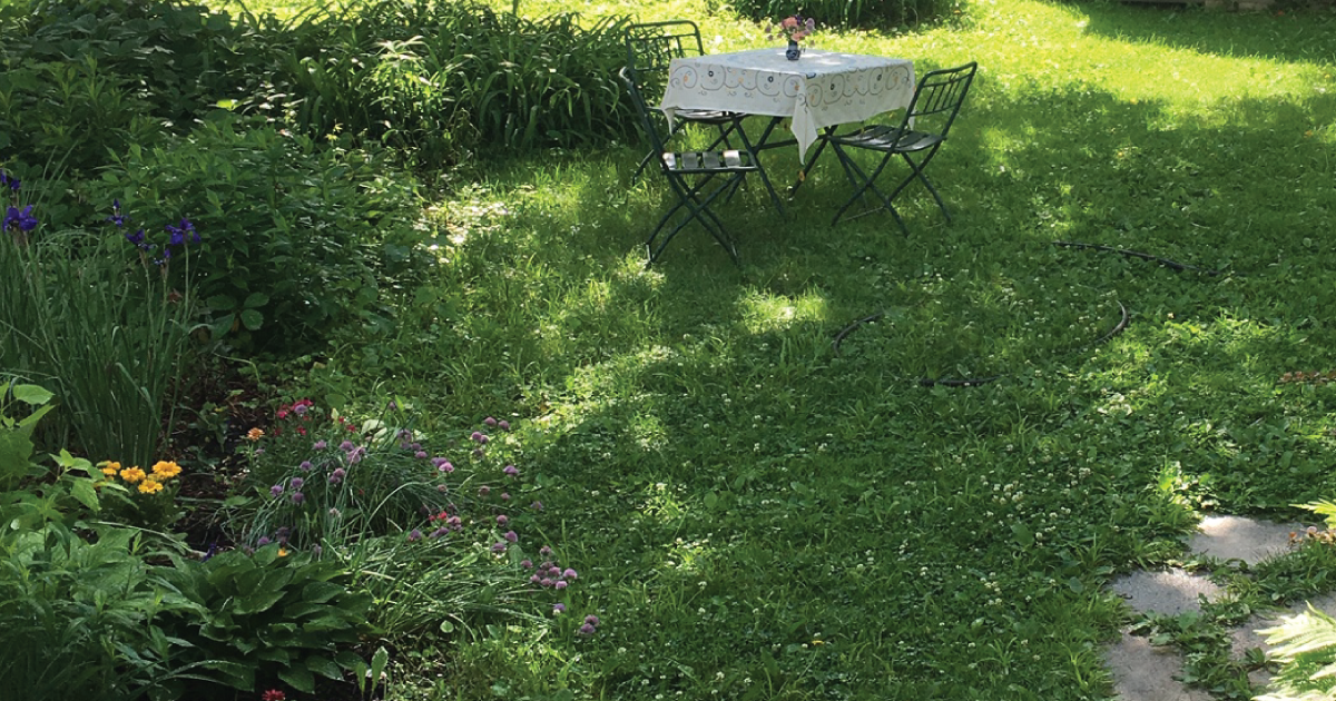 To Nurture Nature, Neglect Your Lawn