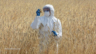 Poisoned Agriculture: Depopulation and Human Extinction