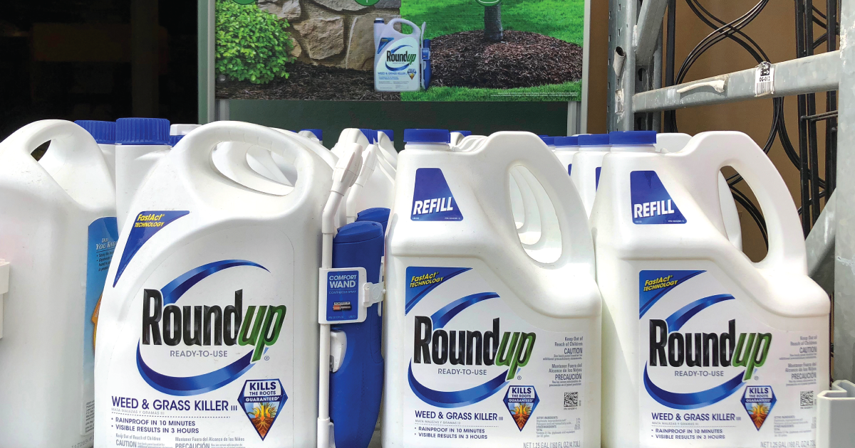 Judge Cuts Amount Monsanto Owner Bayer Owes Cancer Victim