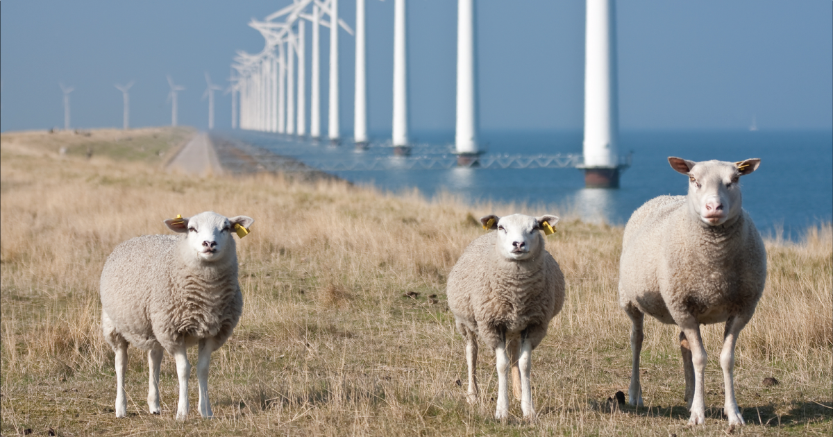 Step Aside Agribusiness, It's Time for Real Solutions to the Climate