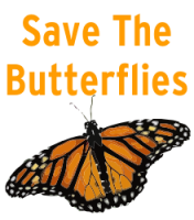 Save The Butterflies Logo