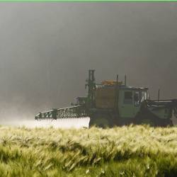 heavy farm equipment spraying a wheat crop field with herbicides