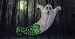 Picture of a ghost over the top of green viruses with a background of a scary, dark forest