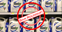 Ban Roundup symbol over top of shelf of Roundup bottles