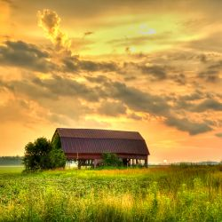 red barn on a farm field at sunset