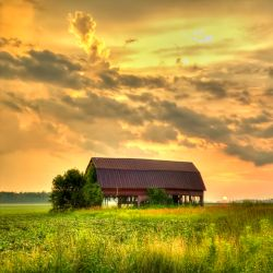 barn on a prairie at sunrise