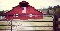 American flag hung on the wall of a red barn behind a metal gate with a wooden star