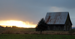 Sunset on a old barn in a field