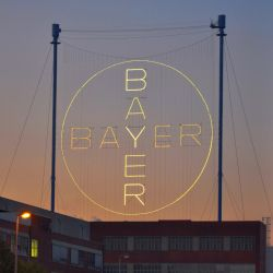 logo for Bayer in neon lights against a sunset