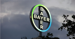 Bayer sign on top of a building