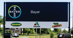 Bayer sign.