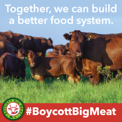 Building a Better Future BOYCOTT BIG MEAT