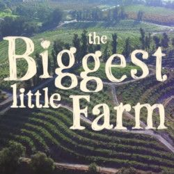 trailer for Biggest Little Farm film