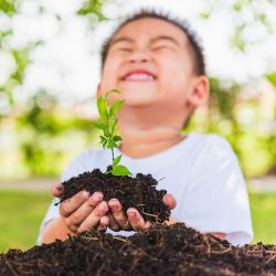 young boy with a seedling in soil in his hands