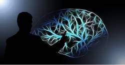 silhouette of a man pointing to a light rendering of a brain with many connections