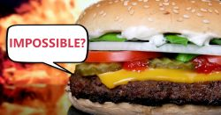 cheeseburger set in front of grill flames with a speech bubble stating IMPOSSIBLE