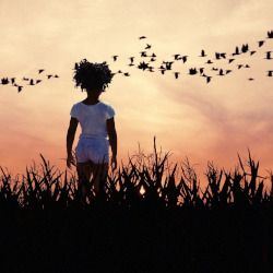 young girl watching a flock of birds fly across the horizon at sunset
