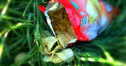 packaged bag of fried potato chips