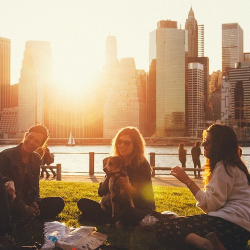 3 women having a picnic in the city