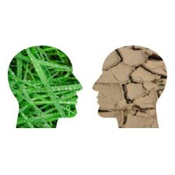 silhouettes of two heads containing green grass and dry soil