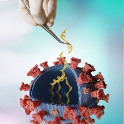 illustrative rendering of a coronavirus cell containing several DNA helixes being manipulated by a tweezers