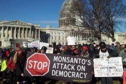 Stop the DARK Act Protest Stop Monsanto