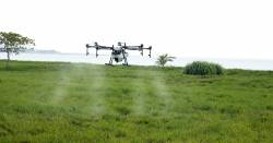 agricultural farm field being sprayed with pesticide or herbicide by a drone