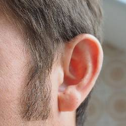Side of a man's face showing his ear