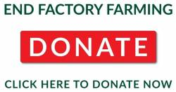 End Factory Farming - Click Here to Donate