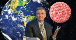 Bill Gates and fake meat.