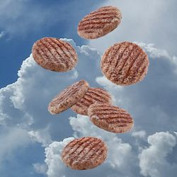 grilled hamburgers falling from the sky
