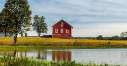 pond of water by a farm field and red barn