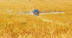 tractor spraying chemical herbicide on crop field at a farm
