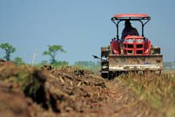 Farmer on tractor among crop rows