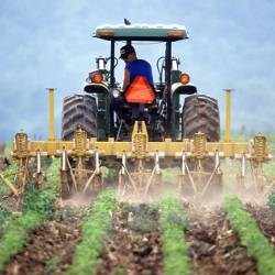 farmer on a tractor in an agricultural crop field spraying a chemical herbicide to the harvest
