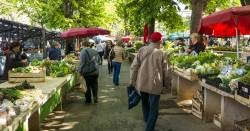 people walking down a line of farmers market stalls selling produce