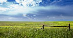 grassy field with a wooden fence against a partly cloudy sky