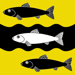 Different colored fish on a yellow and black background