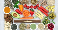diverse array of foods for proper nutrition