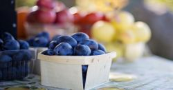 fresh fruit and produce like plums in small wooden containers for a farmers market sale