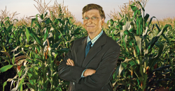 Bill Gates in front of a field of corn.