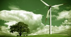 farm field with a wind turbine and tree