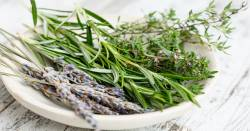 white plate on a whitewashed table including lavender rosemary and thyme