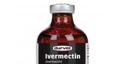 Bottle of Ivermectin.