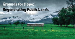 Grounds for hope regenerating public lands